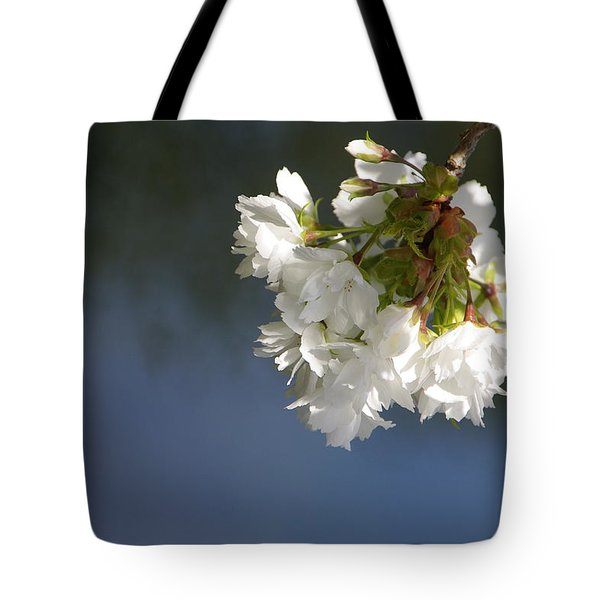 Tote Bag featuring the photograph Tree Blossoms by Marilyn Wilson