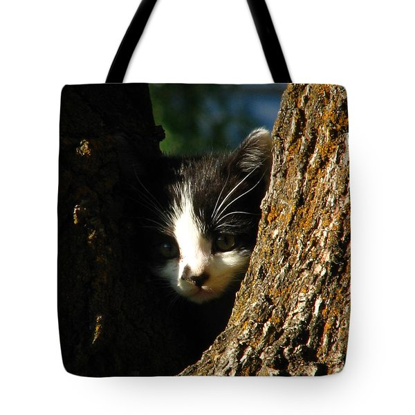 Tree Cat Tote Bag