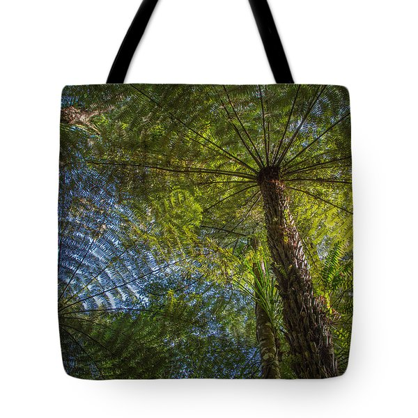 Tree Ferns From Below Tote Bag