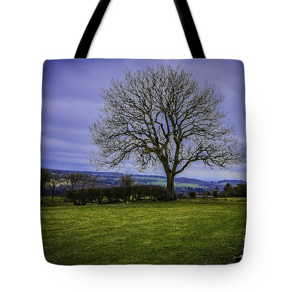 Tree - Hadrian's Wall Tote Bag by Mary Carol Story