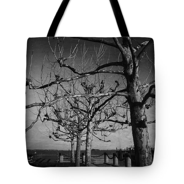 Tree In A Row  Tote Bag