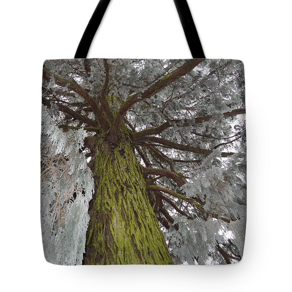 Tote Bag featuring the photograph Tree In Winter by Felicia Tica