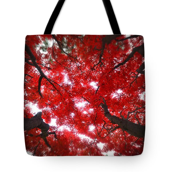 Tote Bag featuring the photograph Tree Light - Maple Leaves Fall Autumn Red by Jon Holiday