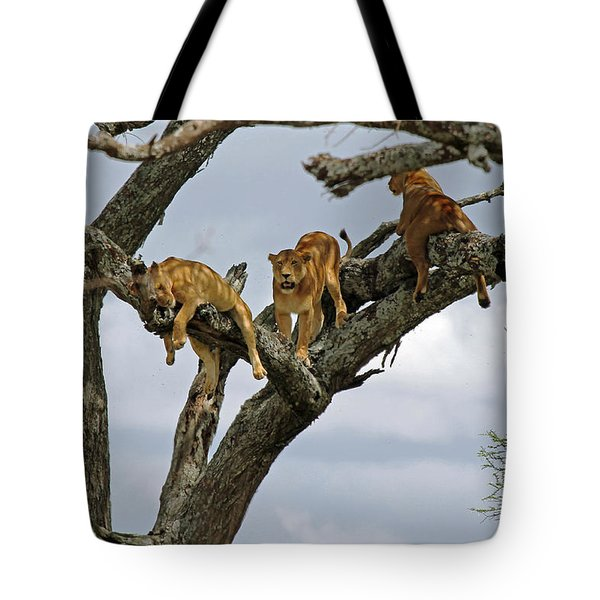 Tree Lions Tote Bag by Tony Murtagh