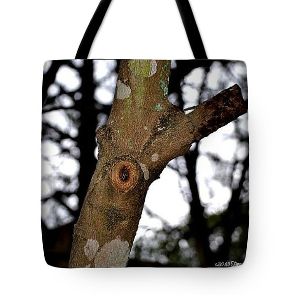 Tote Bag featuring the photograph Tree Observation by Tara Potts