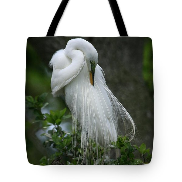 Tote Bag featuring the photograph Tree Of Plumes by John F Tsumas