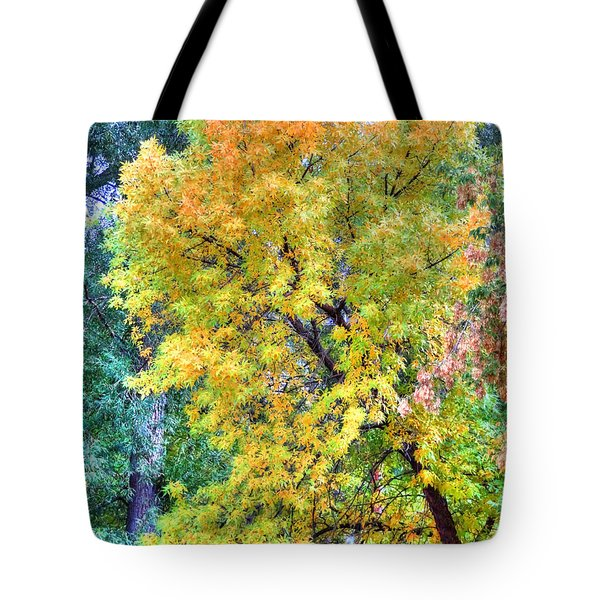 Tote Bag featuring the photograph Tree On Fountain Creek by Lanita Williams