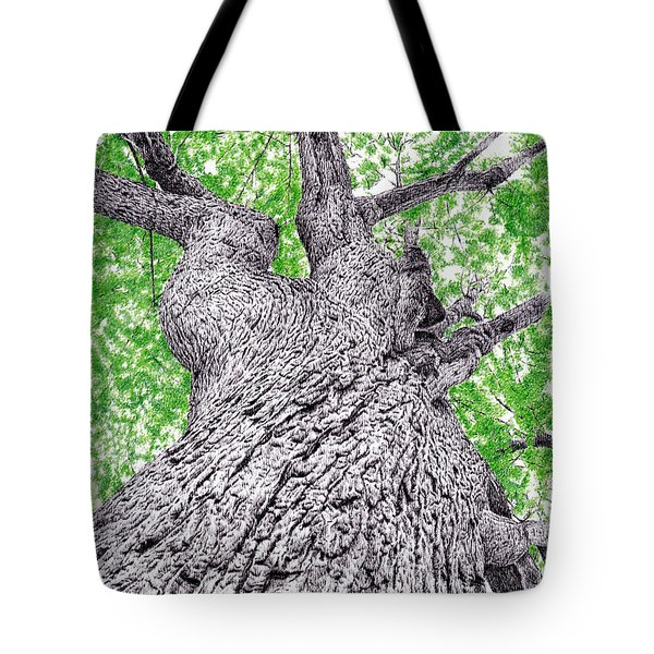 Tree Pen Drawing 4 Tote Bag
