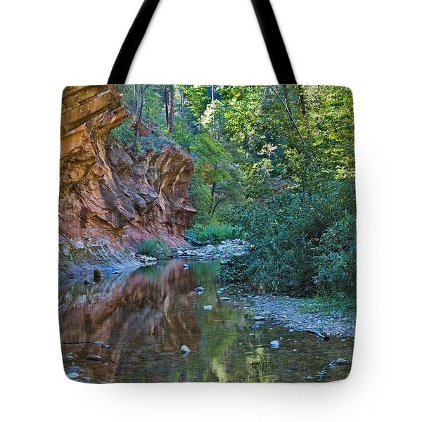 Tote Bag featuring the photograph Tree Reflection by Mae Wertz