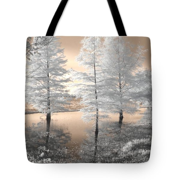 Tree Reflections Tote Bag by Jane Linders