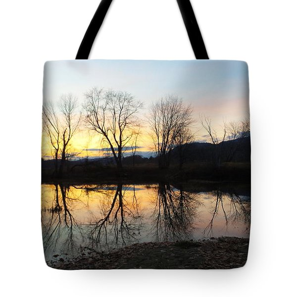 Tree Reflections Landscape Tote Bag