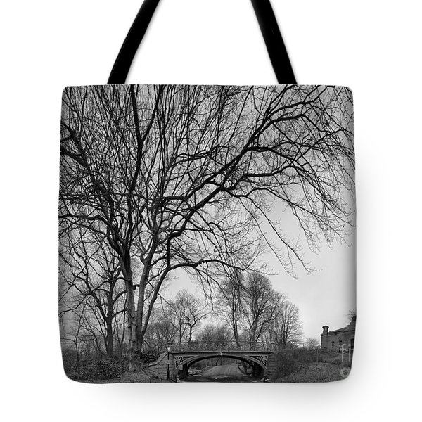 Central Park Photos - Tree Reservoir Bridge Tote Bag
