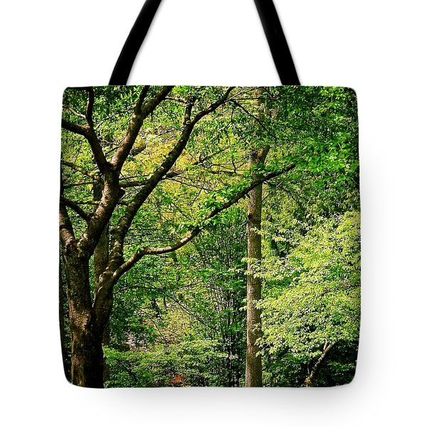Tote Bag featuring the photograph Tree Series 3 by Elf Evans