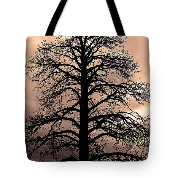 Tree Silhouette Tote Bag by Laurel Powell