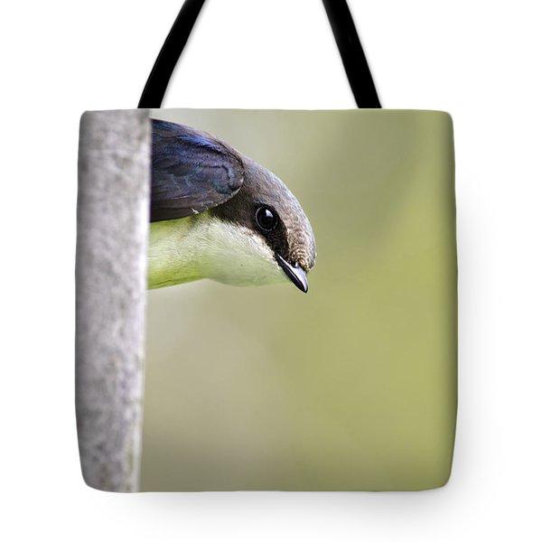 Tree Swallow Closeup Tote Bag by Christina Rollo