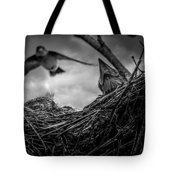 Tree Swallows In Nest Tote Bag