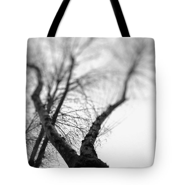 Tree Tote Bag by Taylan Apukovska