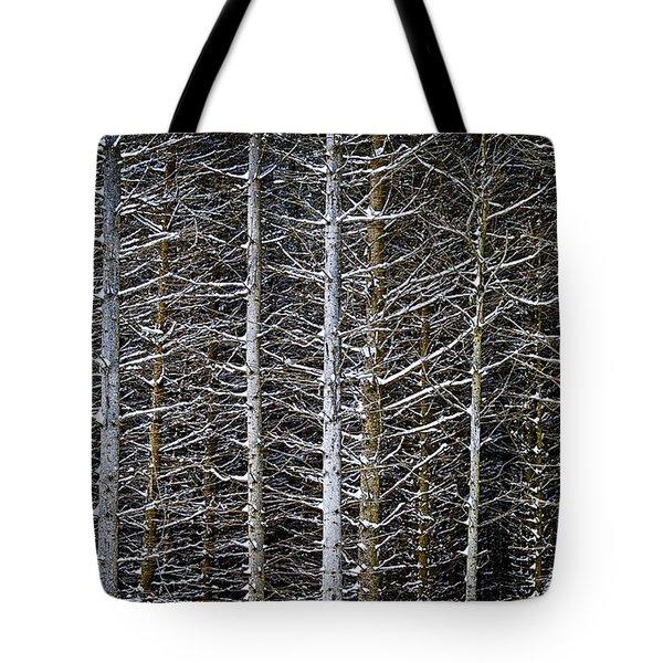 Tree Trunks In Winter Tote Bag by Elena Elisseeva