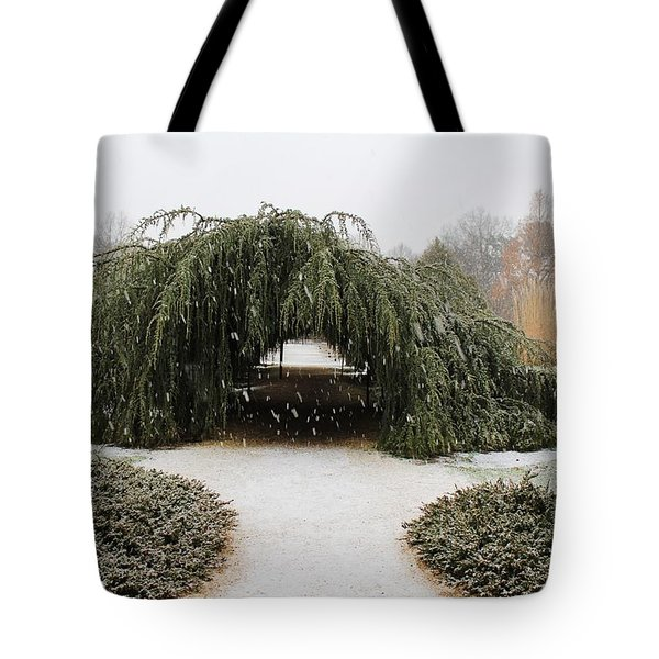 Tree Tunnel Tote Bag by Karen Silvestri