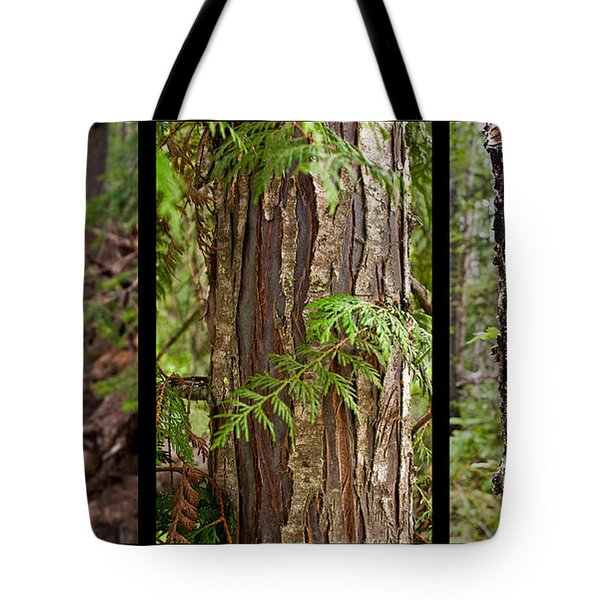 Tree Wear By Nature Tote Bag by Sandi Mikuse
