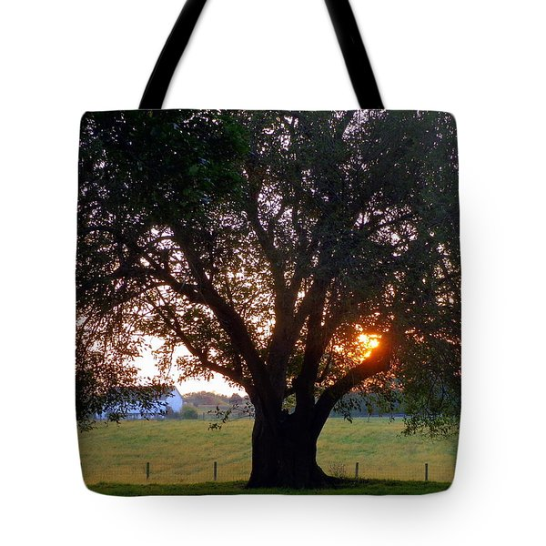 Tree With Fence. Tote Bag by Joseph Skompski