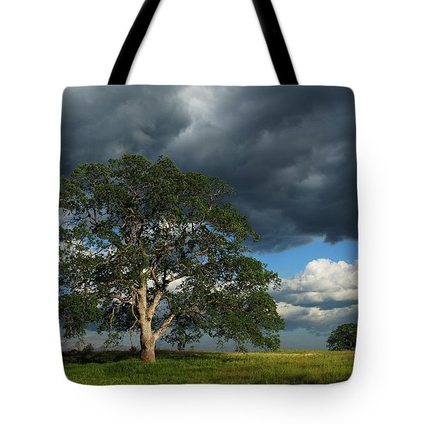Tree With Storm Clouds Tote Bag