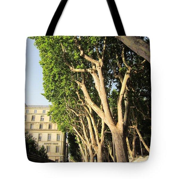 Treed Avenue Tote Bag by Pema Hou