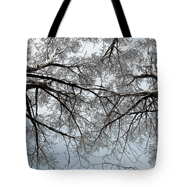 Tote Bag featuring the photograph Trees  1 by Minnie Lippiatt