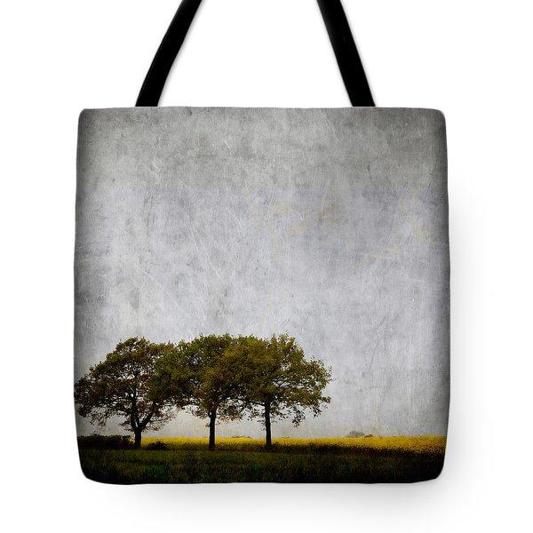 Trees At Sunrise Tote Bag