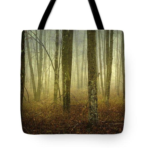 Trees II Tote Bag