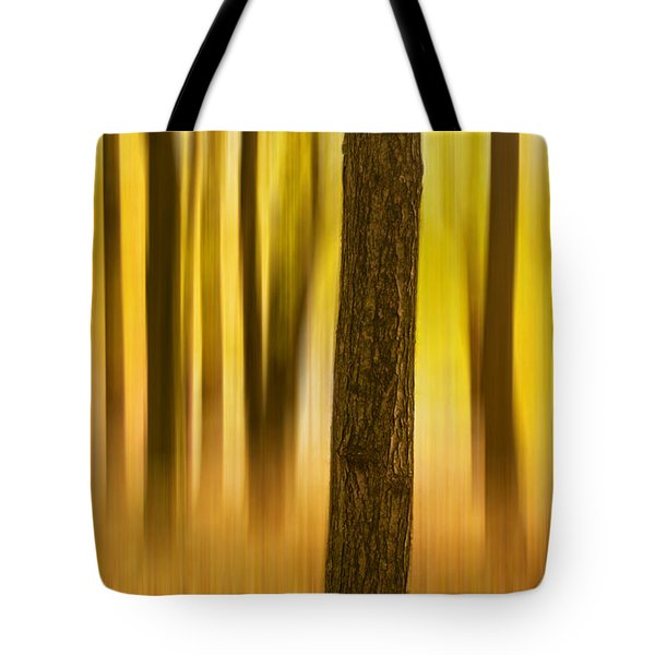 Trees In Autumn Forest Tote Bag