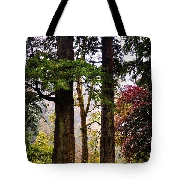 Trees In Autumn Glory. Scotland Tote Bag by Jenny Rainbow