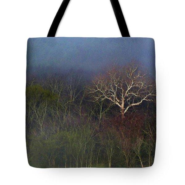 Trees In Fog 4 Tote Bag by Dena Kidd