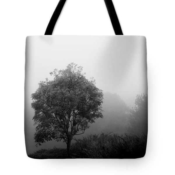 Trees In The Midst 2 Tote Bag