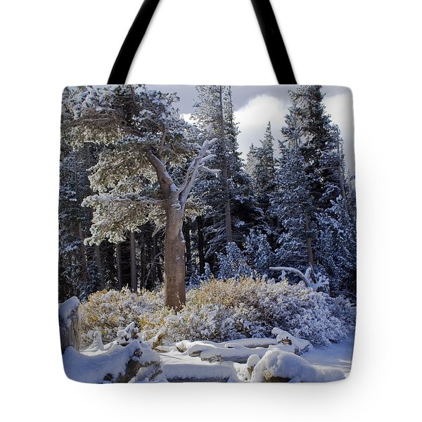 Trees Of Mcleod Tote Bag by Chris Brannen