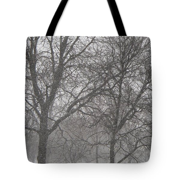 Trees Of Silence Tote Bag