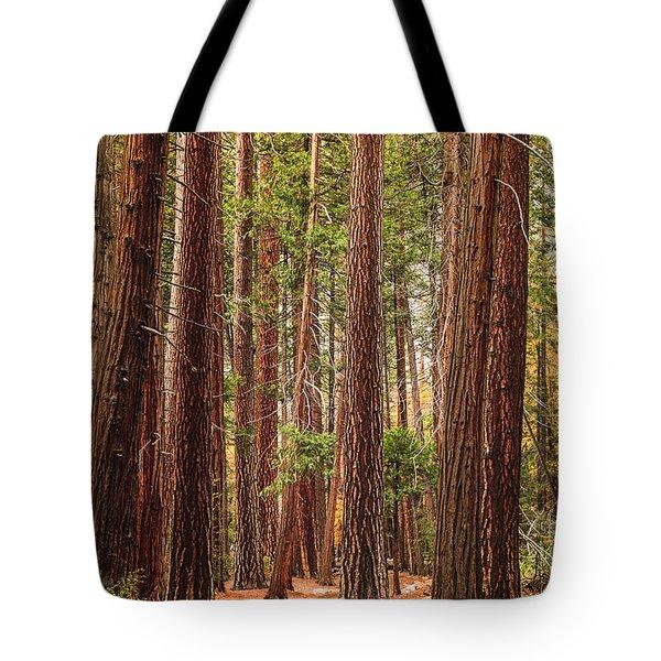 Trees Of Yosemite Tote Bag