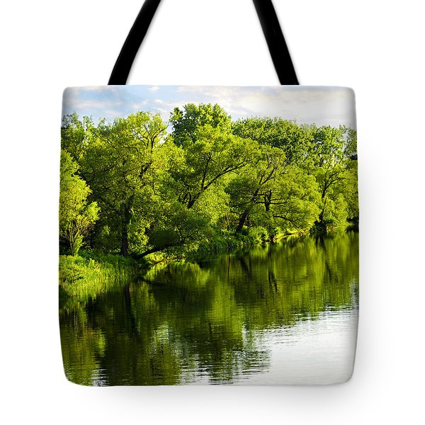 Trees Reflecting In River Tote Bag by Elena Elisseeva