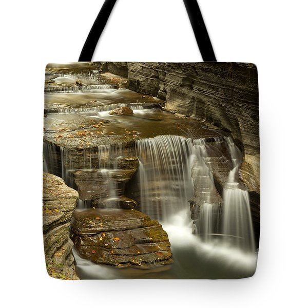 Treman At Dusk Tote Bag