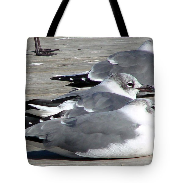 Tote Bag featuring the photograph Tres Amigos by Linda Cox