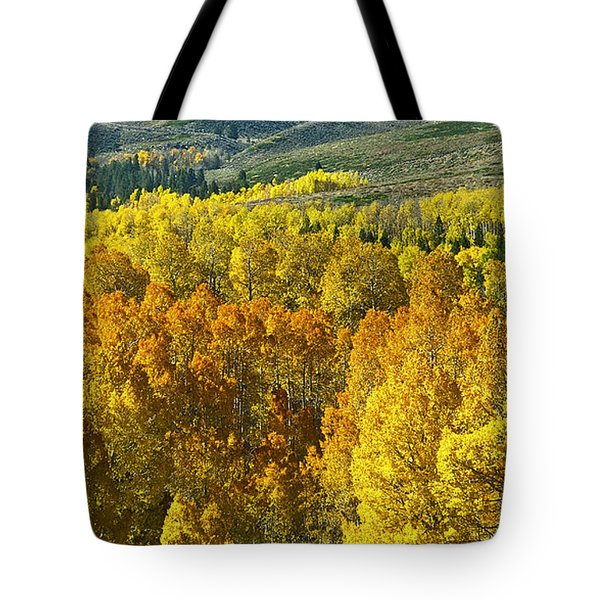 Tri Color Aspen Tote Bag