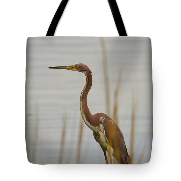 Tote Bag featuring the photograph Tri-colored Heron  by Bob Sample