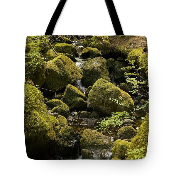 Tributary Tote Bag by Sean Griffin