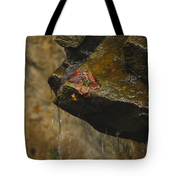 Trickling Water Tote Bag by Mary Carol Story