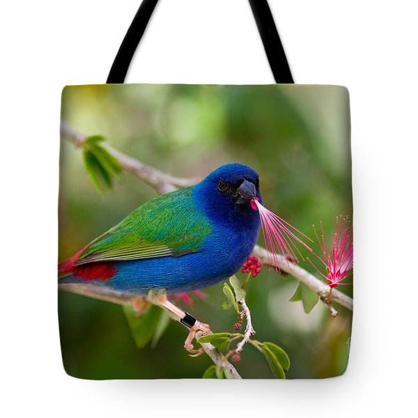 Tote Bag featuring the photograph Tricolor Parrot Finch by Les Palenik