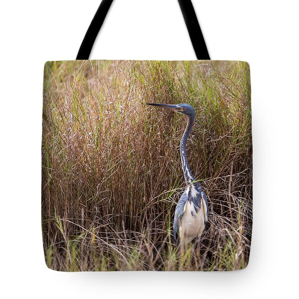 Tote Bag featuring the photograph Tricolored Heron Peeping Over The Rushes by John M Bailey