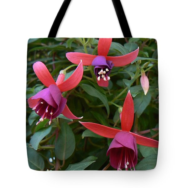 Trifecta Tote Bag by Michael Porchik