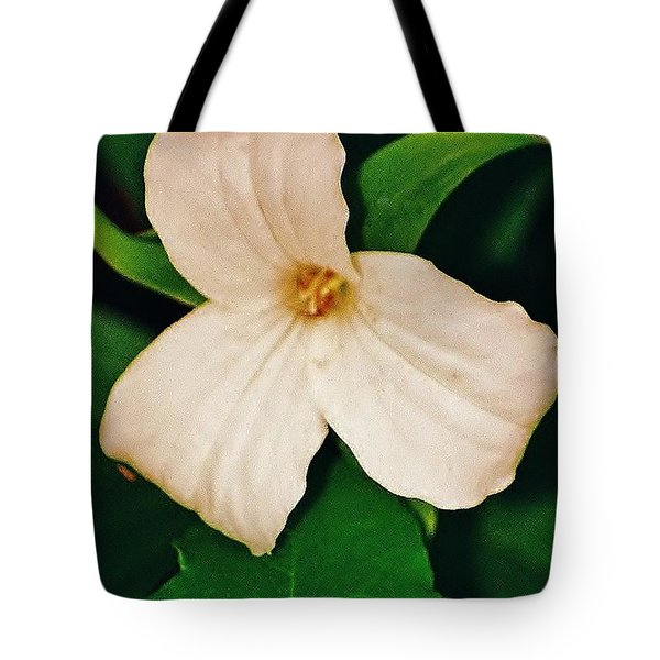 Tote Bag featuring the photograph Trillium by Daniel Thompson