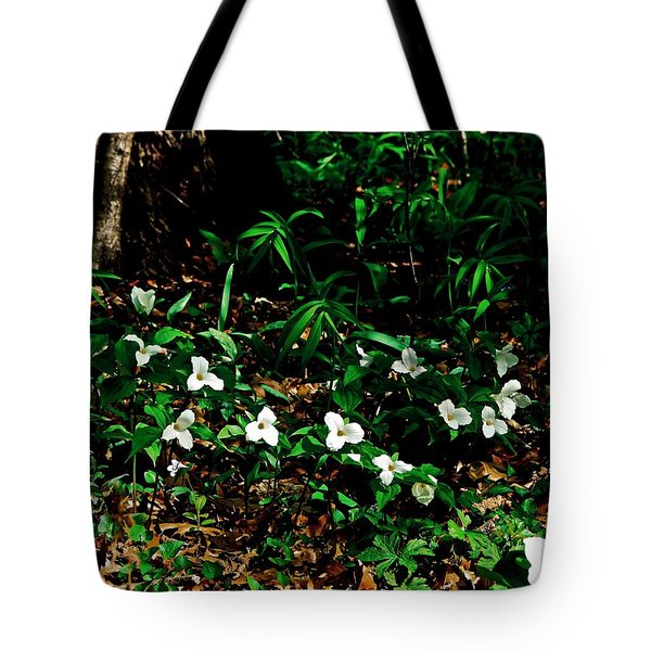 Trillium In Morning Sun Tote Bag by Michelle Calkins