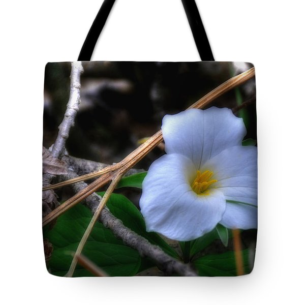 Tote Bag featuring the photograph Trillium On County C by Trey Foerster